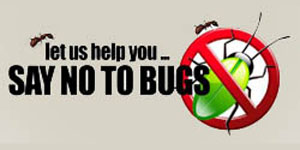 Say No To Bugs